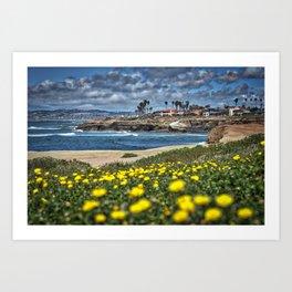 Daisies, Sunset Cliffs, San Diego Art Print