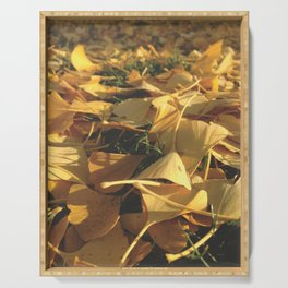 Beautiful Ginkgo leaves Serving Tray