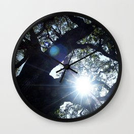 Legacy Oak Tree on the Grounds of Beringer Winery 2005 Wall Clock