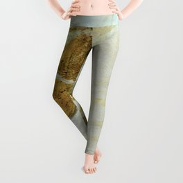 Polished Marble Stone Mineral Texture 5 Leggings