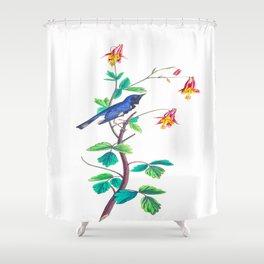 Black throated Blue Warbler John James Audubon Vintage Scientific Hand drawn Illustration Birds Shower Curtain
