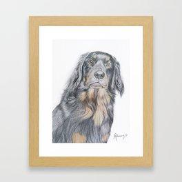 Dog portrait detailed Framed Art Print