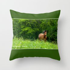 Horse in a pature Throw Pillow