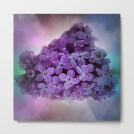 soft and dreamy -11- Metal Print
