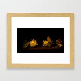 Two roses Framed Art Print