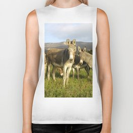 donkey band, donkey, photo, nature, perverse, band, field, lanscape Biker Tank