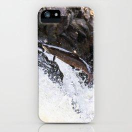Leaping Atlantic salmon salmo salar iPhone Case
