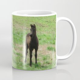 Friesian Foals Coffee Mug