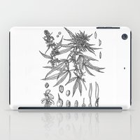 cannabis iPad Cases featuring cannabis sativa by Oxxygene