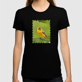 Baltimore Oriole Bird T-shirt