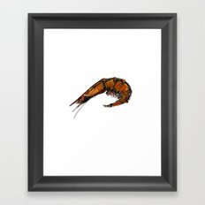 Prawn Framed Art Print