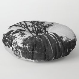 Exotic Tropical Trees Silhouette, Socotra Island Floor Pillow