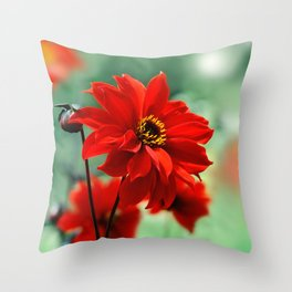 Dahlia red 082 Throw Pillow