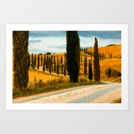 avenue of cypresses 3 Art Print