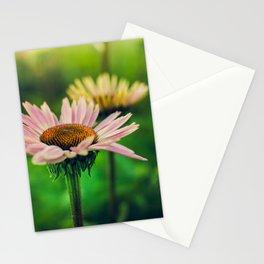 Daisy VI Stationery Cards