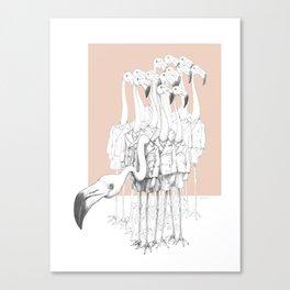 Weird & Wonderful: Flamingo Boys Canvas Print