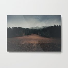 Forest in autumn Metal Print