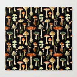 Toadstools Canvas Print