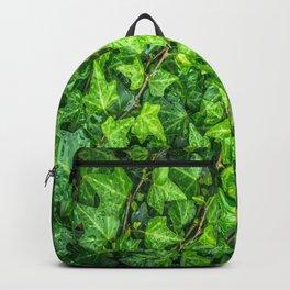 ivy leaves Backpack