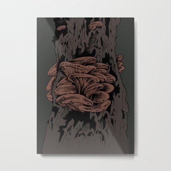 Sopp Metal Print