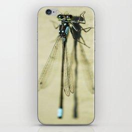 Delicate Damselfly iPhone Skin