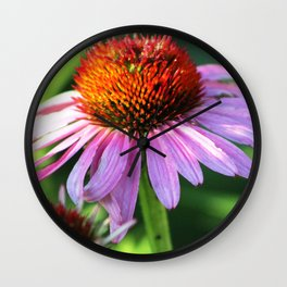 Cone Flower or Echinacea in Horicon Marsh Wall Clock