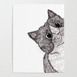 Astonishment Cat Poster