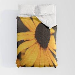 Black Eyed Susan  Comforters
