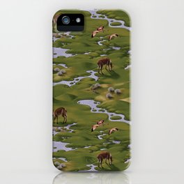 Vicuñas and Flamingoes iPhone Case