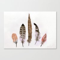 feathers Canvas Prints featuring Feathers by emegi