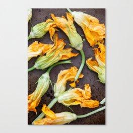 Zucchini Blossoms Canvas Print