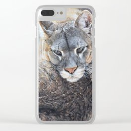 Just Chillin - Cougar Painting by Alan M Hunt Clear iPhone Case