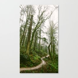 Forest // Path Canvas Print