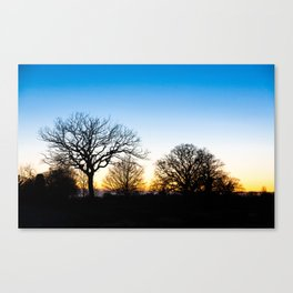 Sunset at RHS Gardens, Wisley Canvas Print