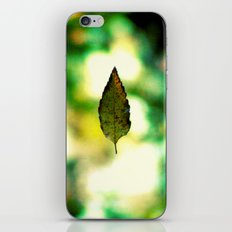All the leaves are brown...except this one. iPhone & iPod Skin
