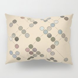Colours In Nature Pillow Sham