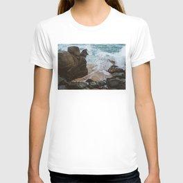 Pedregal, Mexico VII T-shirt