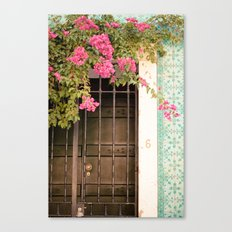 Door #6 Canvas Print