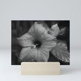 Dew Diligence Mini Art Print