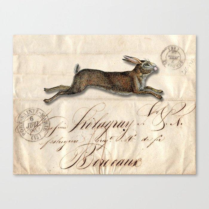 The French Rabbit Leinwanddruck