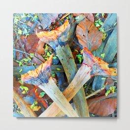 Dragon Tree Leaves Texture Metal Print