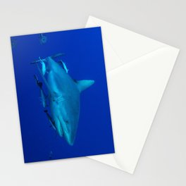 Grey Reef Shark on the Great Barrier Reef Stationery Cards