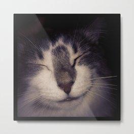 Happy Kitty Metal Print