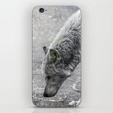ivory and ebony iPhone & iPod Skin