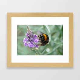 Hello Flower! Framed Art Print