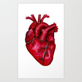 Anatomical Heart Painting Red Art Print