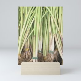Farmer's Market Scallions Mini Art Print