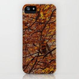 autumm' colours iPhone Case
