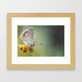 Composition in other colors....  Framed Art Print
