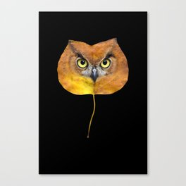 Autumn Owl-4 Canvas Print